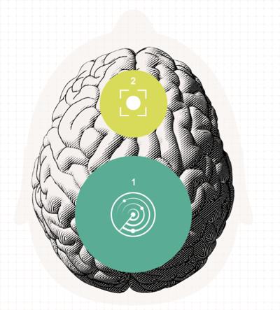Oticon brain image